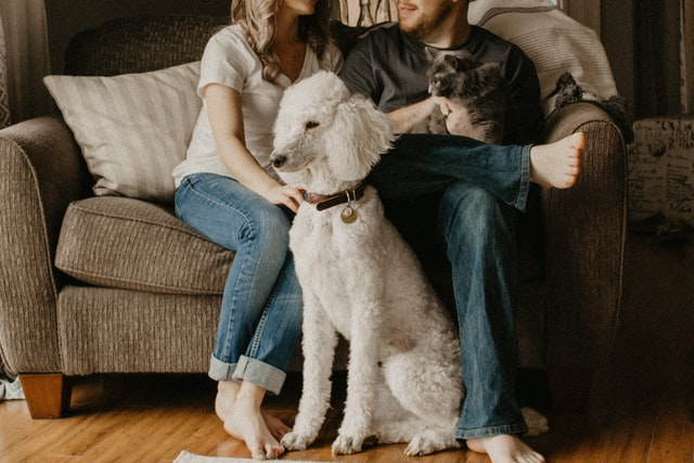 A couple with their dog and cat.