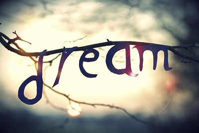 Dream sign on tree branch.